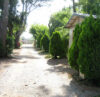 location emplacement camping provence